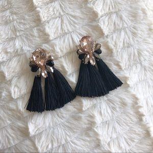 H&M tassel earrings